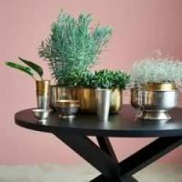 Decorative Bowls & Dishes