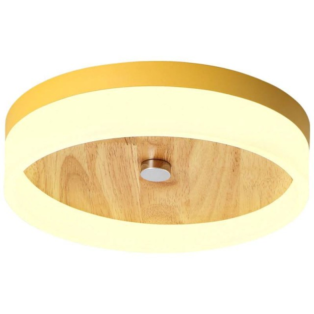 Luxury Flush Ceiling Lights Flush Ceiling Lights For Sale